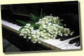 Перейти в Статью - *Весенний Музыкальный EVABOR*
