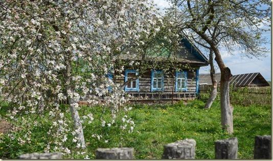 Нажмите на фотографию, чтобы продолжить путешествие по Псковской земле в Очерке *Простые Древности…