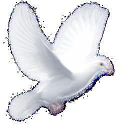 Пройдите по этой ссылке, чтобы узнать про Зимнее Рождество НЕбесного Младенца — Спасителя нашего…