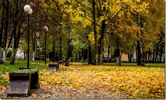 На этом фото запечатлён устланный осенней позолотой небольшой Тверской скверик...