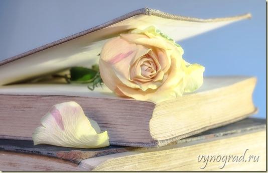 """Ссылка этого фото предлагает и Вам сказать """"Спасибо за Розы!.."""" доброму сказочнику Гансу Христиану Андерсену!.."""