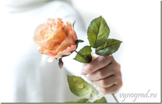 """Нажав на фото, пройдите по ссылке и читайте Историю создания сказки Г. Х. Андерсена """"Улитка и Розовый куст"""" в Очерке *Спасибо за Розы!.."""
