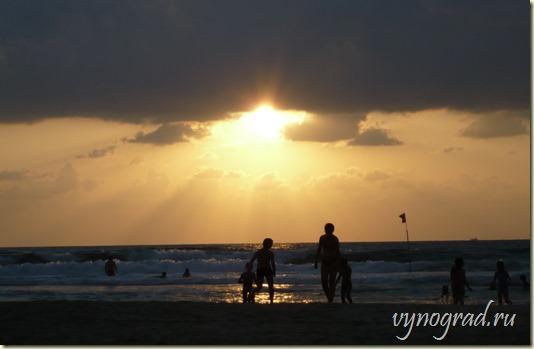 Ссылка этого фото ведёт в авторский Очерк *Нетания на Средиземном море* из цикла *Путешествие по Израилю....
