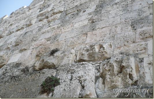 На этом фото - уникальный Иерусалимский Камень, из которого построен практически весь город...