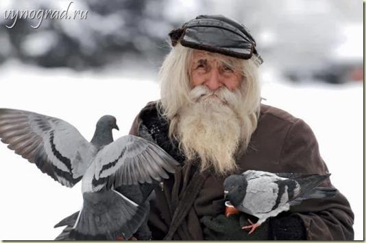 Напоминание: *Дедушка Добри - это Скромность, Много Веры и Много Любви...