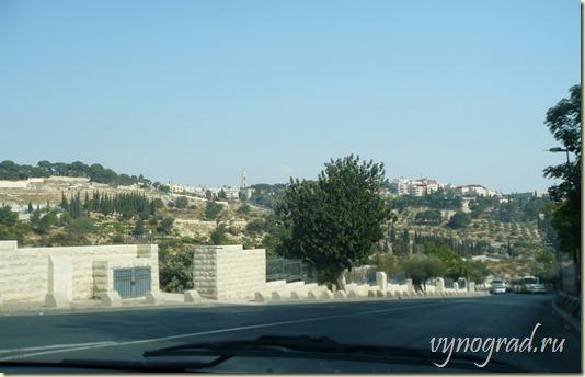 На фотографии - вид на Иерусалим и его зелёные насаждения...