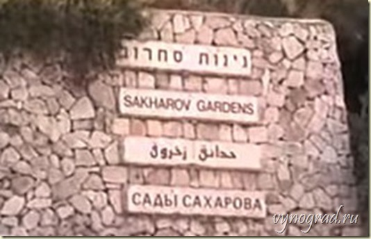 На фото видна надпись *Сады Сахарова* на 4-х языках при въезде в Иерусалим по шоссе №1...