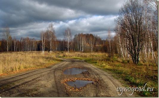 Ссылка этого фото открывает *Стихотворение *Любимой России...* - Автор Виктория VK...